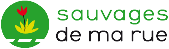 Image:Sauvages
